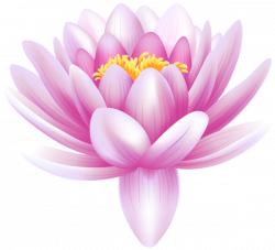 Water Lily Transparent PNG Clip Art Image | Gallery Yopriceville ...
