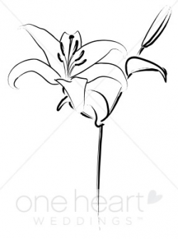 Elegant Lily Clipart | Wedding Lily Clipart