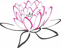 water lily - Google Search | Tats | Pinterest | Water lilies ...