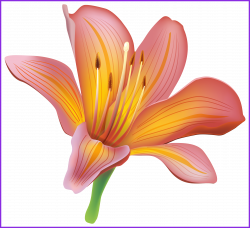 The Best Flower Vintage Clothing Clip Art Lily Png Pics Of And Trend ...