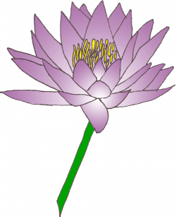 Water lily cliparts png - Clipartix