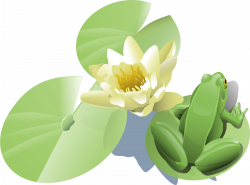 Clipart - Frog on a lily pad