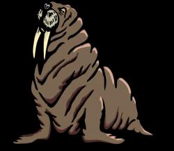 Wrinkled Walrus Clip Art at Clker.com - vector clip art online ...