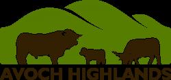 Highland coat colour genetics — Avoch Highlands Cattle