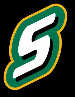 2017 NCAA Baseball Baton Rouge Regional - LSUsports.net - The ...