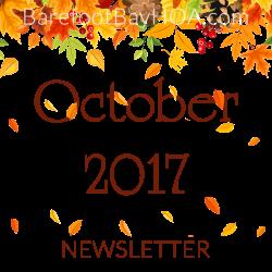 Newsletter | Barefoot Bay