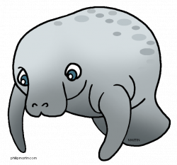 Manatee Clipart | Clipart Panda - Free Clipart Images