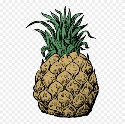 Hawaii Clipart Hawaiian Pineapple - Pineapple, HD Png ...
