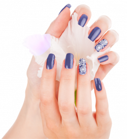 Perfect Nail - Best Nail Designs on the Market - Easy Nail Art for ...