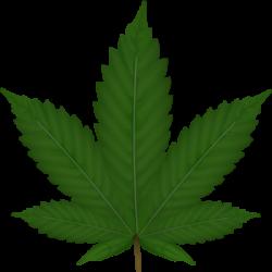 Marijuana Weed Leaf Clipart