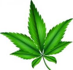 Marijuana Clip Art Free | Clipart Panda - Free Clipart Images