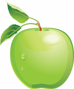 apple_PNG4733.png | Pinterest | Clip art, Food clipart and Clip art ...