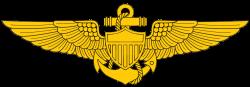 Awards - Carrier Air Wing Eight - Digital Combat Simulator