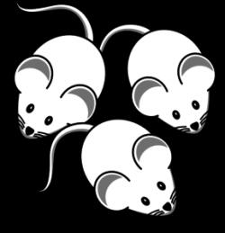 3 Mice Clip Art at Clker.com - vector clip art online, royalty free ...