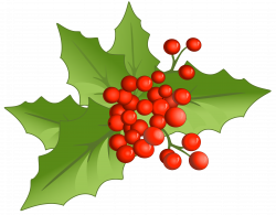 Christmas Large PNG Mistletoe Clipart   Gallery Yopriceville - High ...