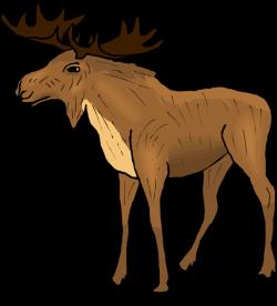 Moose Clipart