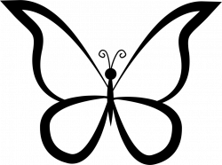 Butterfly Outline Design From Top View Svg Png Icon Free Download ...