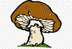 Flower Drawing clipart - Mushroom, Tree, Flower, transparent ...
