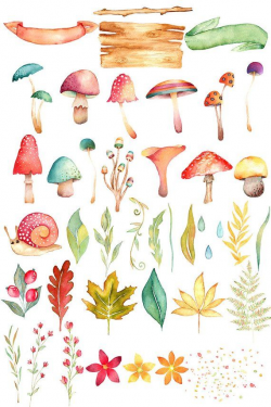 Watercolor mushroom clipart, fall clipart, woodland clipart ...