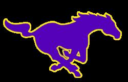 The Central Arkansas Christian Mustangs - ScoreStream