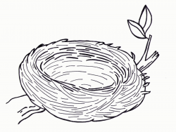 Birds Nest Coloring Pages Printable - Coloring Pages For All ...