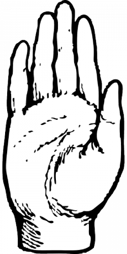 Hands Open Drawing at GetDrawings.com | Free for personal use Hands ...