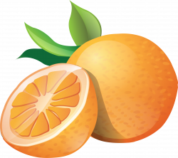 Free Orange Cliparts, Download Free Clip Art, Free Clip Art on ...