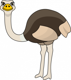 Ostrich Clipart at GetDrawings.com | Free for personal use Ostrich ...