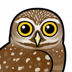 Cute Burrowing Owl by Birdorable < Meet the Birds