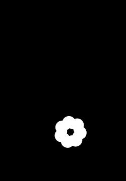 Clipart - Paisley