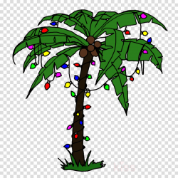 Palm Tree Leaf clipart - Holidays, transparent clip art