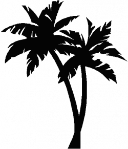 palmtree tattoo | Palm tree image | ink | Pinterest | Palm, Tattoo ...