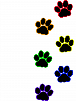 Cat paw print - Rainbow | Artworktee