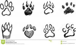 Draw A Dog Paw Print How To Draw A Paw ... | Drawing Basics ...