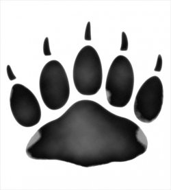 Free Polar Bear Paws, Download Free Clip Art, Free Clip Art ...