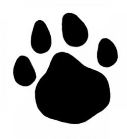 Paw Print Huge Collection Of Dog Clipart More Than Png - AZPng