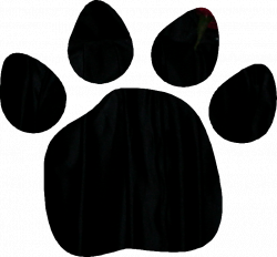 Paw Prints Clipart | Free download best Paw Prints Clipart on ...