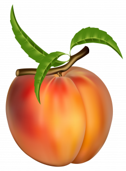 Peach Clipart Free | Zöldség, gyümölcs | Pinterest | Peach, Free and ...