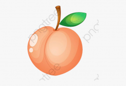 Peach Clipart Fruit #589193 - Free Cliparts on ClipartWiki