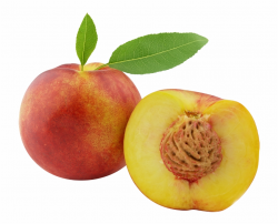 Peach Fruit Clipart - Peach Clipart Free PNG Images ...