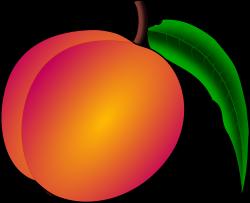 PEACH TREES Daniel – Szkółka drzewek owocowych