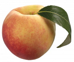 peach with green leaf png - Free PNG Images | TOPpng