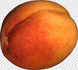 Nectarine Fruit , Peach transparent background PNG clipart ...