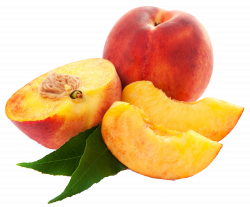 Large Peaches PNG Clipart | Gallery Yopriceville - High-Quality ...