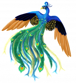 peacock.png picture by lorenith - Photobucket | Love of Peacock ...