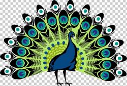 Peafowl PNG, Clipart, Animals, Art, Beak, Bird, Clip Art ...