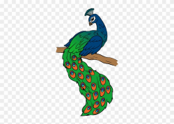 Peacock Drawing - Drawing Picture Of Peacock Clipart ...