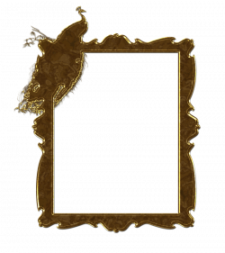 King Peacock Gold Frame by TheArtist100 on DeviantArt
