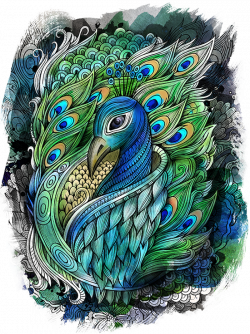 PEACOCK by balabolka, via Behance   Zentangle   Pinterest   Peacocks ...