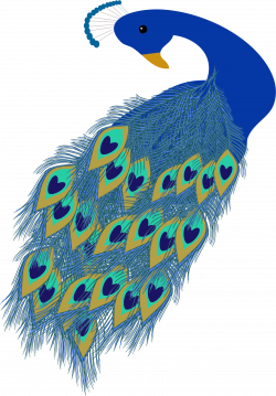 Peacock Illustration Icons PNG - Free PNG and Icons Downloads